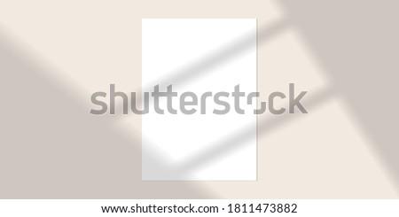 vector mock up shadow overlay