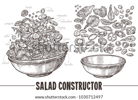 Vector monochrome set of sketch elements, components and ingredients for vegetables salat. Hand drawn collection of cut products and plate