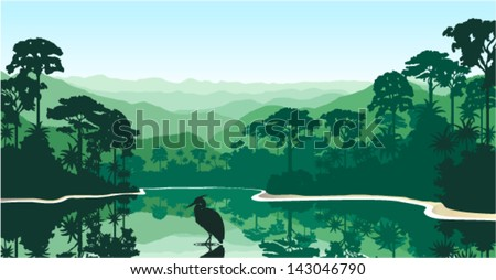 vector morning in jungle lake