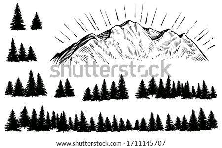 vector mountain with forest