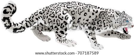Stock Photo vector mountains snow leopard