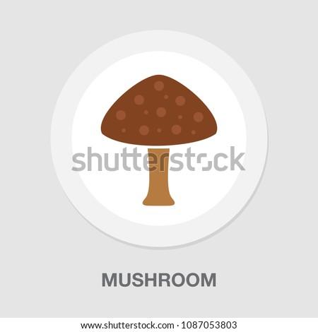 Vector Mushroom vegetable illustration isolated, nature organic fungus - vegetarian veggie silhouette