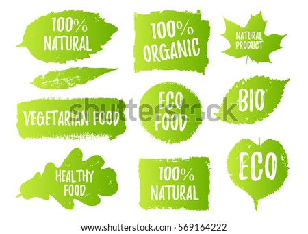 Vector natural, organic food, bio, eco labels and shapes on white background. Hand drawn stains, leaves set.
