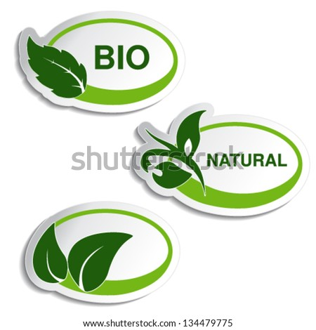 Vector natural symbols - stickers with leaf, plant