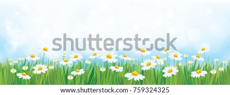 vector  nature background  blue
