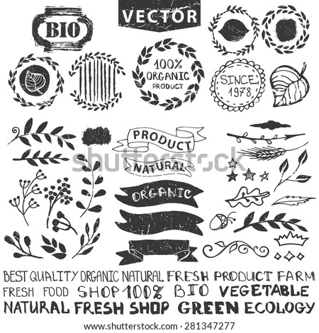 vector nature bio  logo