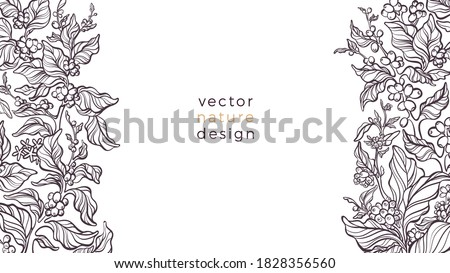 Vector nature border. Coffee plant, leaves, bean, grain, branch on white background. Aroma arabica drink, tropical plantation. Art sketch illustration