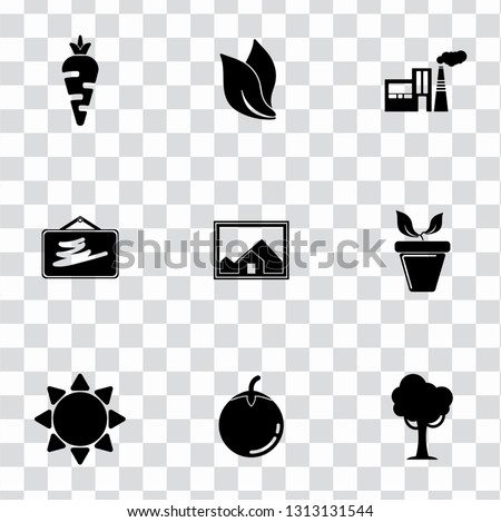 vector nature sign symbols. eco, ecology, environment and organic icons set