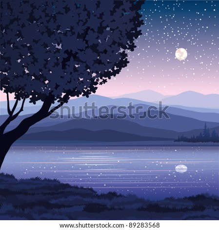 Vector night landscape with mountains, lake and tree on a starry sky background