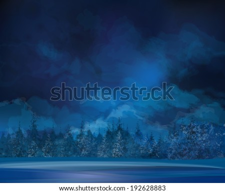 vector night  winter scene  sky