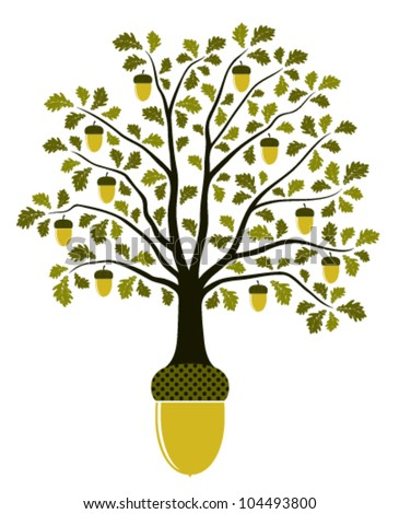 vector oak tree growing from acorn on white background
