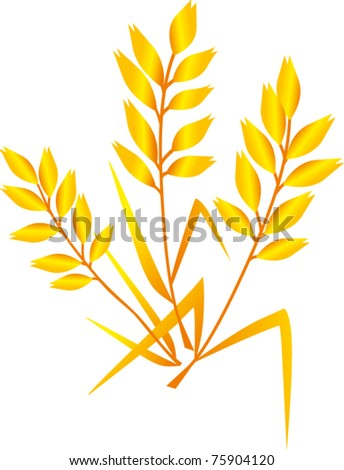 vector oat  isolated