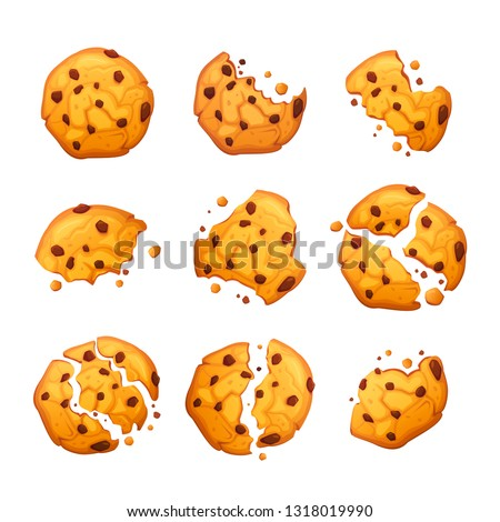 Vector oatmeal cookie with chocolate crumbs isolated on white background. Homemade choco chip cookies vector illustration. Set of bitten and broken cookies. Isolated biscuits on white background.