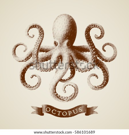 Vector octopus painted in engraving style. Eps8. RGB Global colors