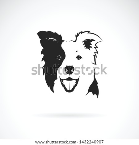 Vector of a border collie dog on white background. Pet. Animal. Dog logo or icon. Easy editable layered vector illustration.