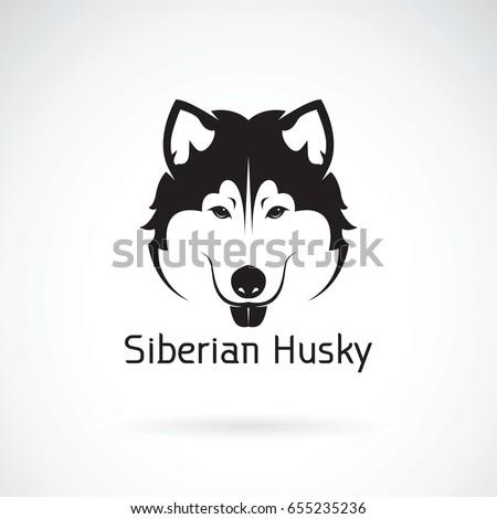 vector of a dog siberian husky