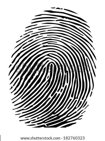 Vector of a fingerprint