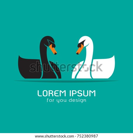 vector of black swan and white
