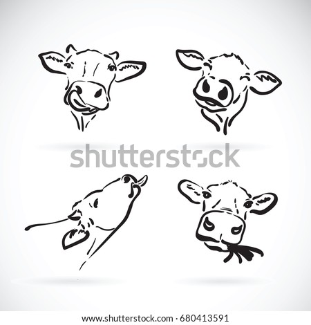 Vector of cow head on white background. Farm Animal. Cow icon