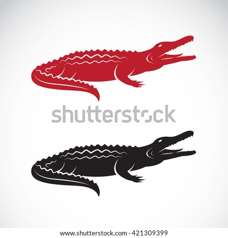 Vector of crocodile design on white background.  Wild Animals. illustration. Logo