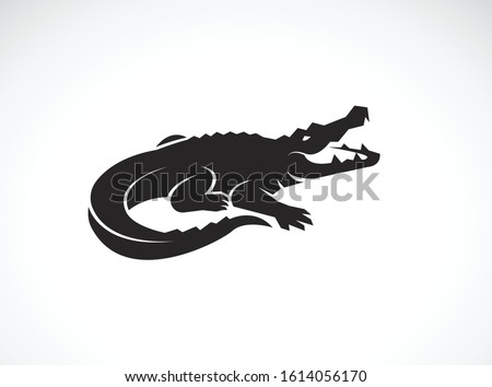 Vector of crocodile design on white background. Wild Animals. Reptile. Easy editable layered vector illustration.