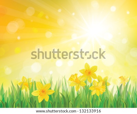 stock-vector-vector-of-daffodil-flowers-on-spring-background