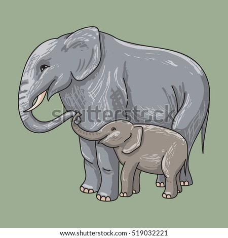 vector of elephant with baby