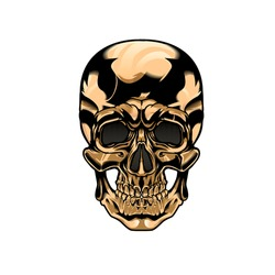 Vector of golden skull for tattoo or clothing designs