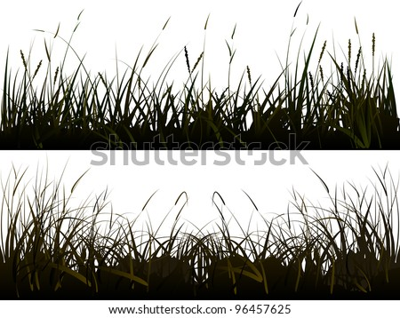 vector of isolated  background