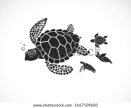 Vector of mother turtle and baby turtle on a white background. Reptile. Animals. Easy editable layered vector illustration.