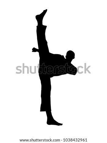 vector of silhouette martial arts high kick