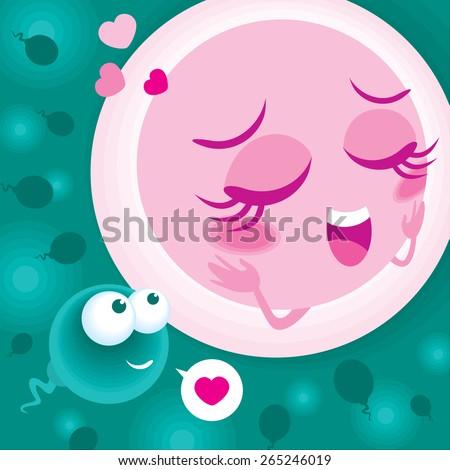 Sperm and egg cell meet