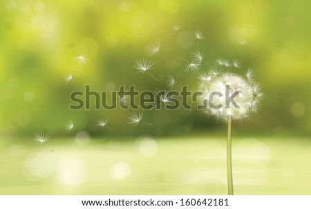 vector of spring background