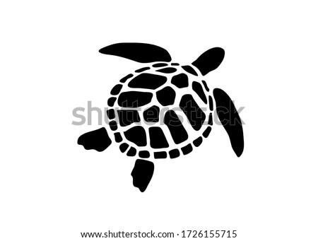 vector of turtle design on