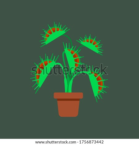 vector of venus flytrap which