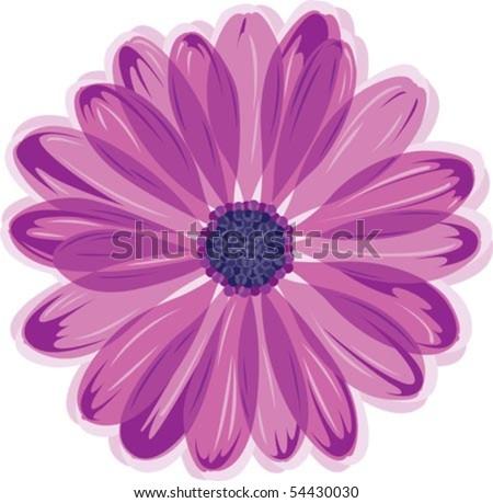 vector or a daisy flower