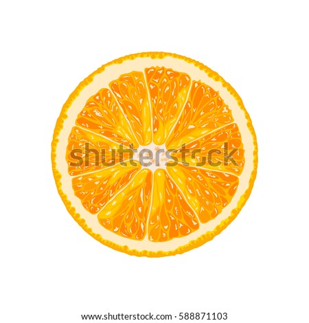 vector orange slice