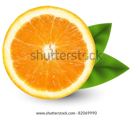 vector orange slice isolated