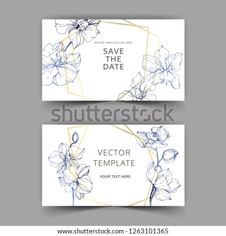 vector orchid botanical flower