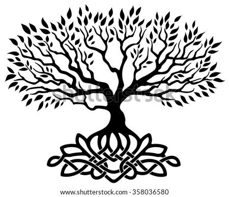 free celtic tree vector download free vector art stock graphics rh vecteezy com tree of life vector clip art free tree of life vector equilibrium vortex