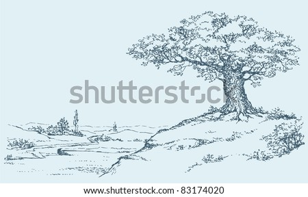 Vector outline. The mighty oak tree grows on top of a hill above the river valley