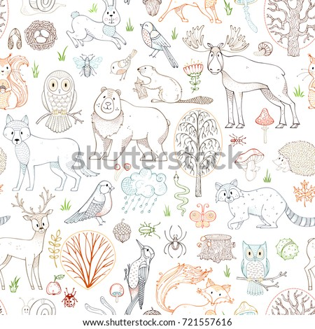 vector outlined woodland