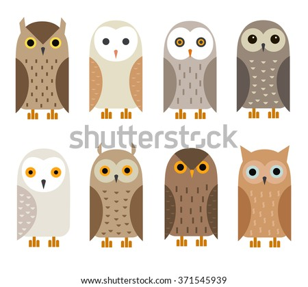 vector owl characters set  owl
