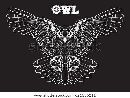 Vector Owl Line Art