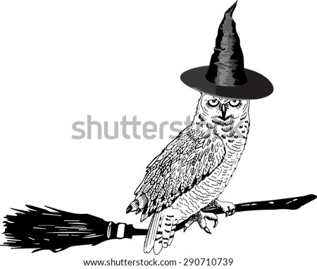 vector owl   witch on a