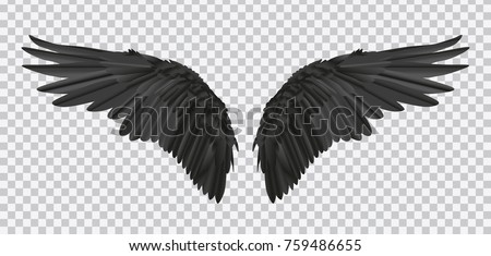 vector pair of black realistic