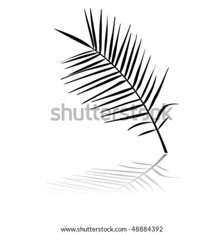 vector palm branch