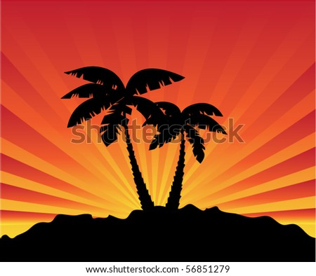 vector palms and sunrise