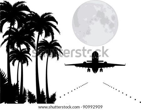 vector palms  moon and plane