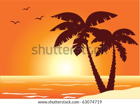 vector palms, ocean and sunset